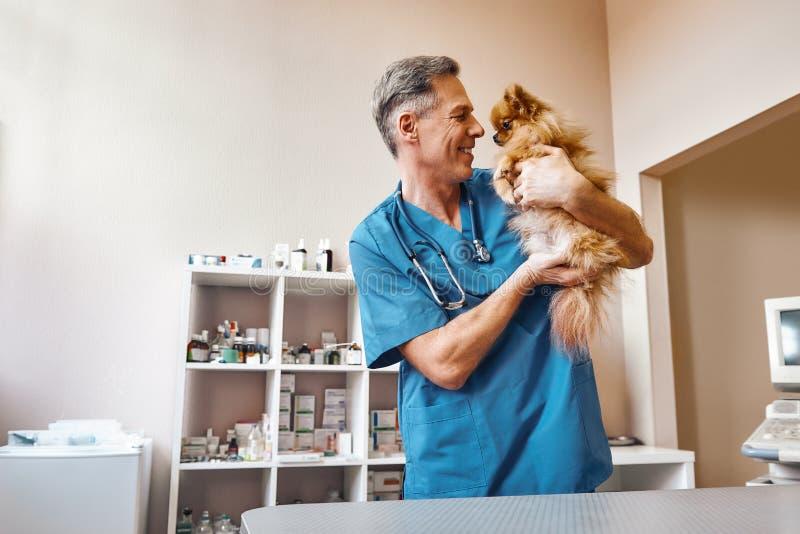 Min bästa del av arbete! Mitt åldrades den positiva veterinären i arbetslikformig som talar med den lilla ljust rödbrun hunden, m arkivfoton