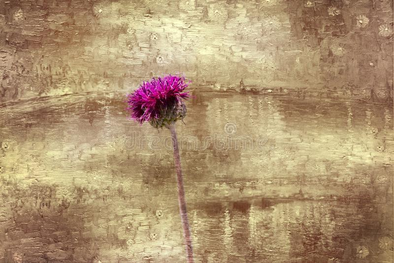 Min blommabakgrundshargita otto arkivbilder