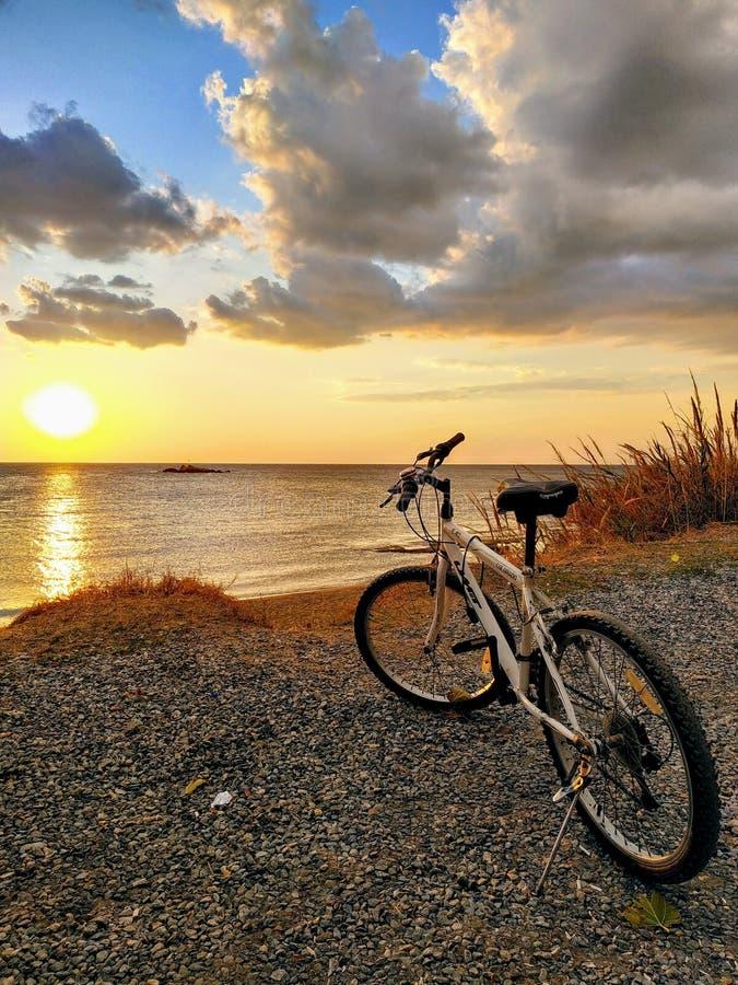 Min cykel royaltyfria bilder