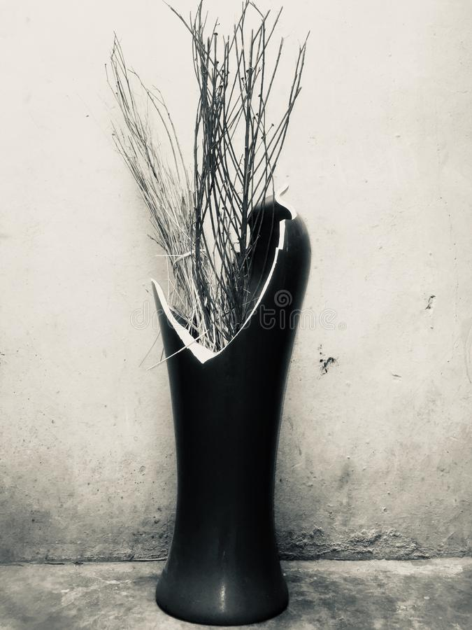 Min härliga brutna blommavas arkivbild