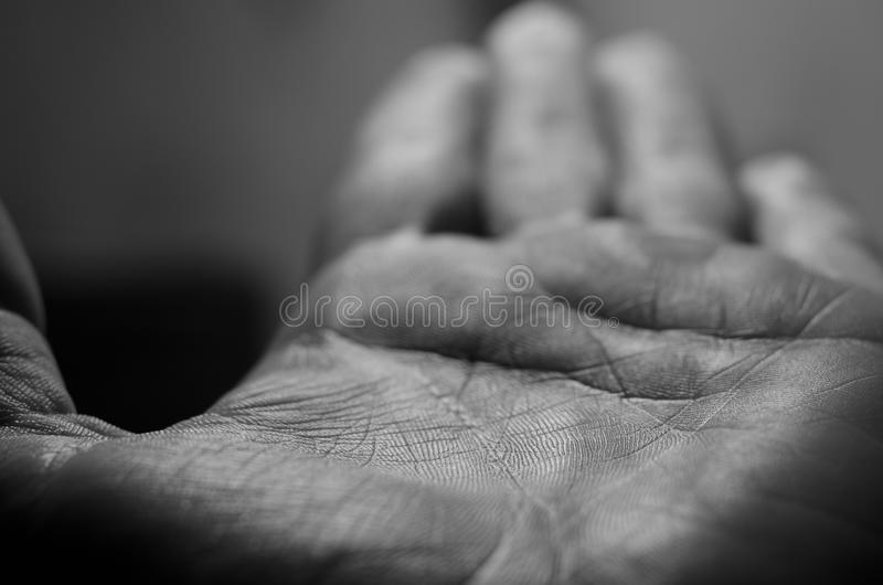 Min hand och linje av liv royaltyfri foto