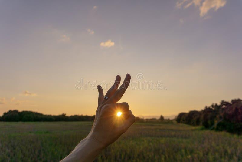 Min hand på solnedgångbakgrund royaltyfri foto