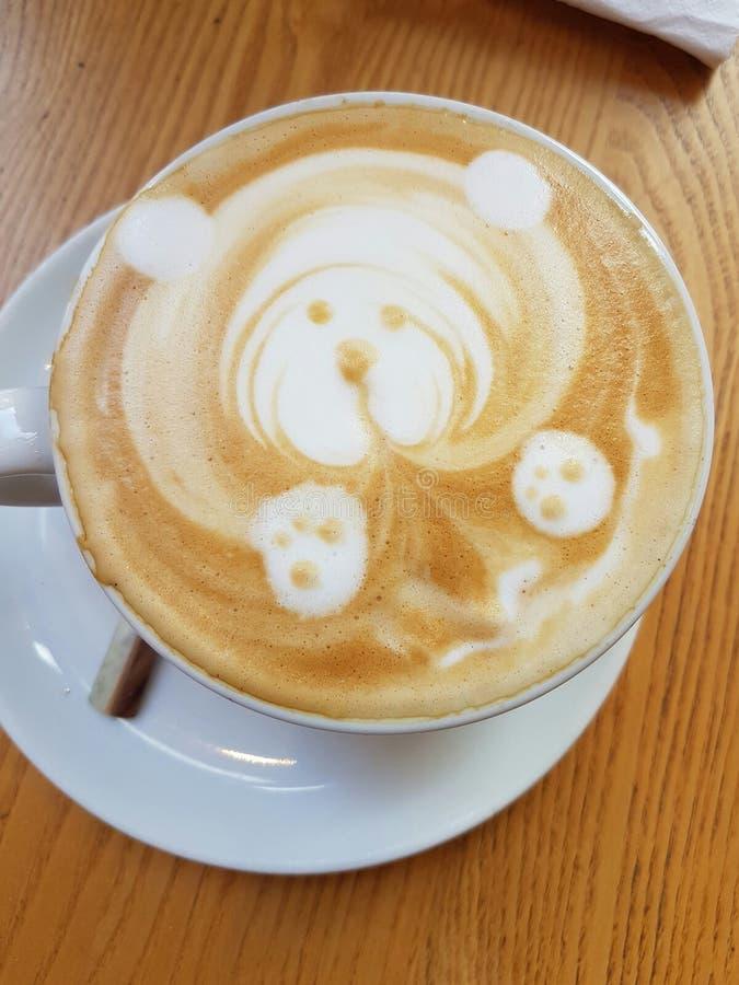 Min kaffebjörnvän royaltyfria foton
