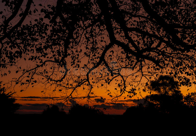 Min solnedgång royaltyfri bild