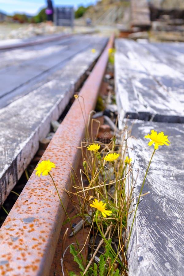 A mina de carvão de Denniston permanece fotos de stock