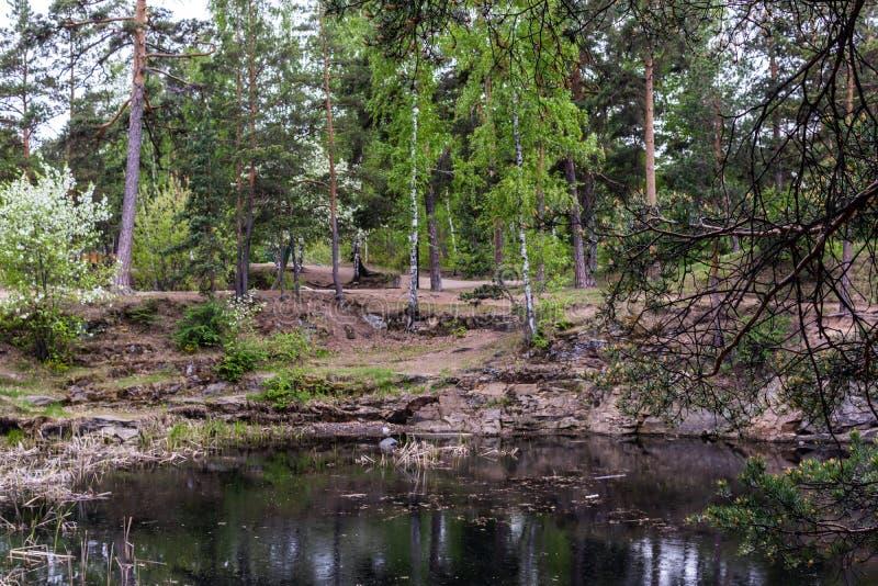 Mina de piedra con agua en el parque imagen de archivo