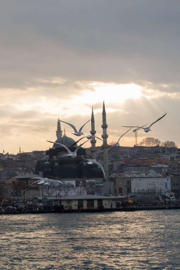 Minaret Osmańscy meczety w widoku zdjęcia stock