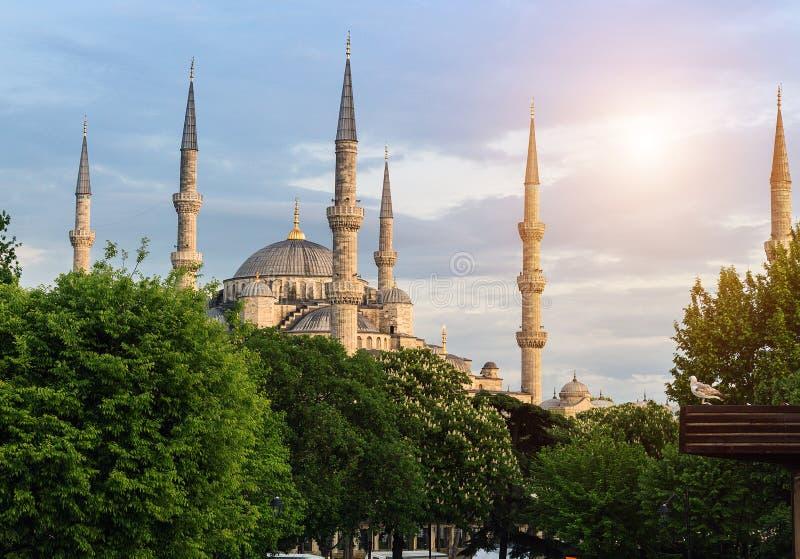 Minarets et dômes bleus de mosquée photo stock