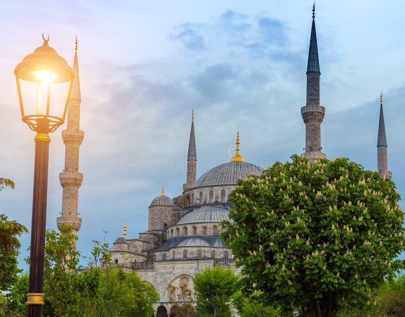 Minarets et dômes mosquée bleue, Istanbul, Turquie photographie stock libre de droits
