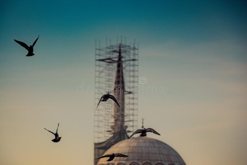 Minarett von Osmane-Moscheen in der Ansicht stockfotos