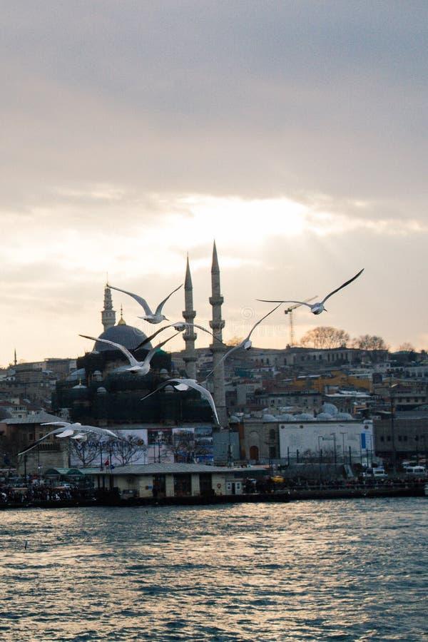 Minarett von Osmane-Moscheen in der Ansicht lizenzfreies stockfoto