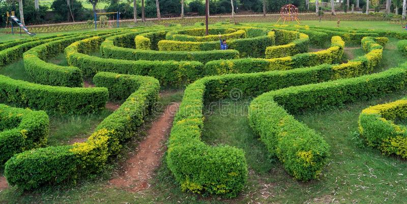 Download Mind Boggling Garden Maze Editorial Photography. Image Of Children    93109387