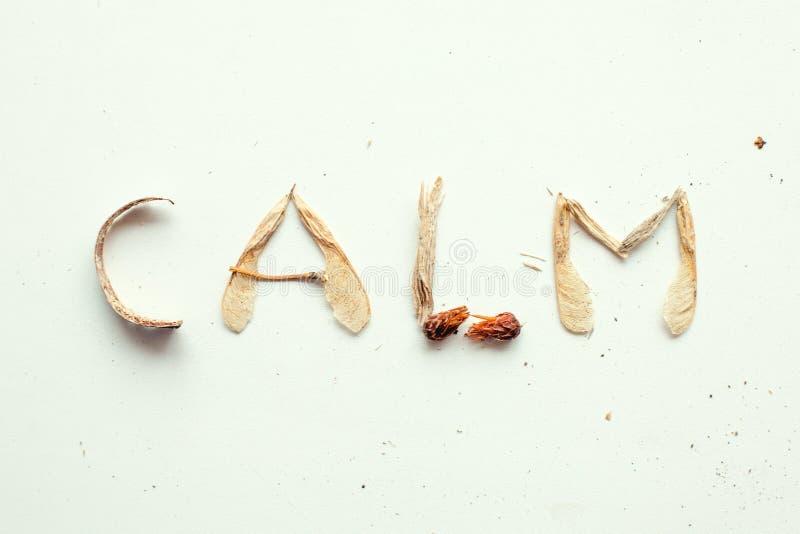 Mindfulness calmness unplug pojęcie, słowo spokój od lasowego naturalnego materiału fotografia stock