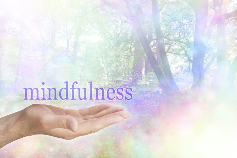 Mindfulness i natur royaltyfria foton