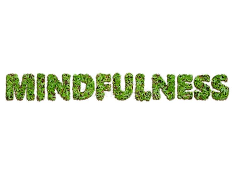 Mindfulness pojęcie używać 3D trawy obraz royalty free