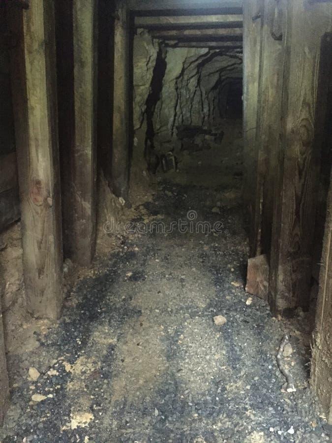 Mine d'or photographie stock libre de droits