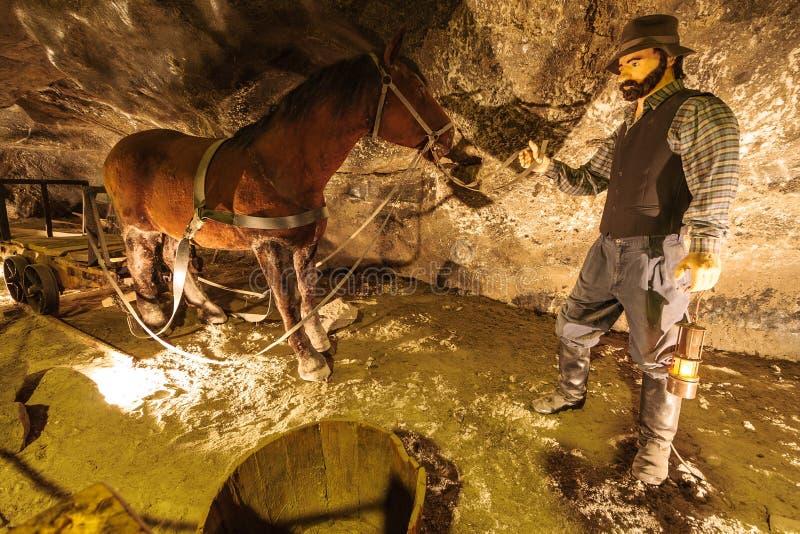 Mine de sel de Wieliczka photographie stock libre de droits