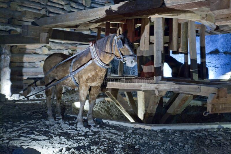 Mine de sel de Wieliczka photo libre de droits