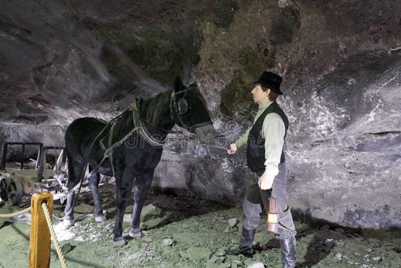Mine de sel de Wieliczka image libre de droits