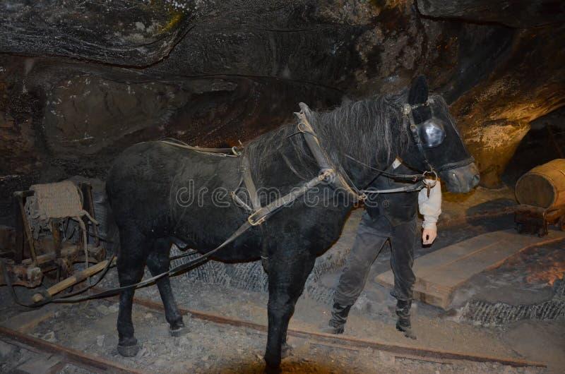 Mine de sel de Wieliczka photos libres de droits
