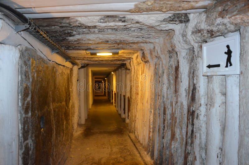 Mine de sel de Wieliczka, Pologne image libre de droits