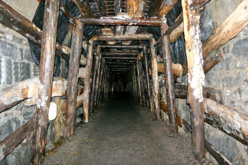 Mine Tunnel Royalty Free Stock Photos