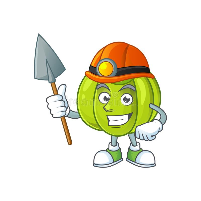 Miner green pumpkin ripe on a white background. Vector illustration stock illustration