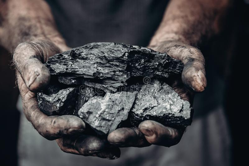 Miner holds coal, palm texture. Concept mining, black stone. stock photography