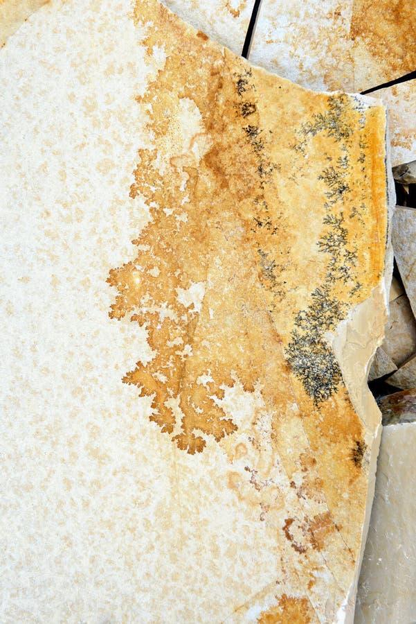Minerais da dendrite em rochas da pedra calcária de Solnhofen fotos de stock