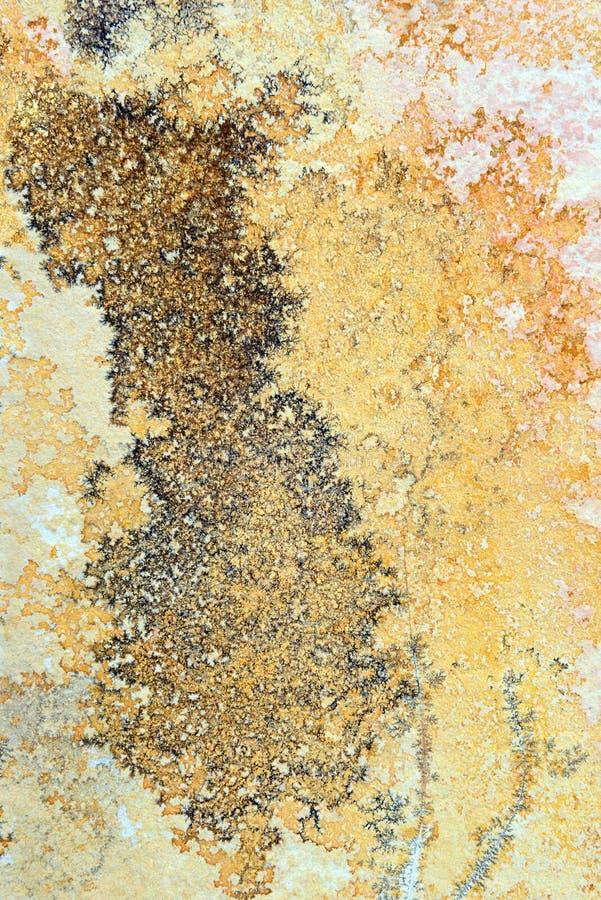 Minerais da dendrite em rochas da pedra calcária de Solnhofen foto de stock