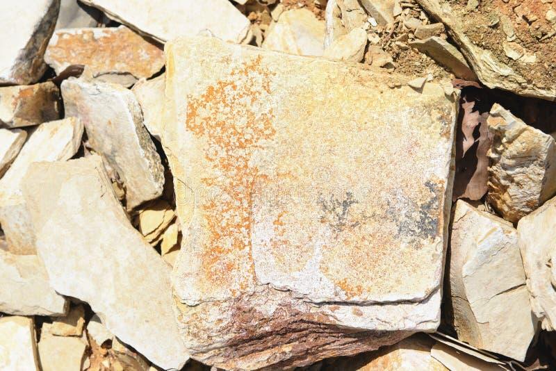 Minerais da dendrite em rochas da pedra calcária de Solnhofen fotografia de stock royalty free