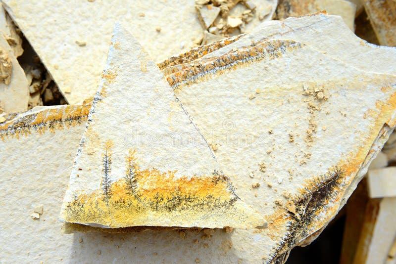 Minerais da dendrite em rochas da pedra calcária de Solnhofen imagem de stock
