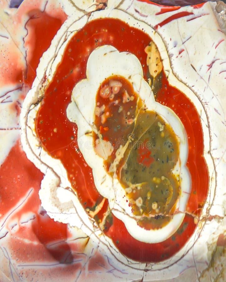Mineral da ágata com círculos vermelhos fotos de stock royalty free