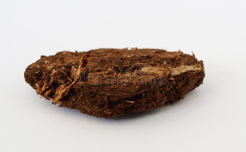 Mineral da turfa no fundo branco foto de stock royalty free