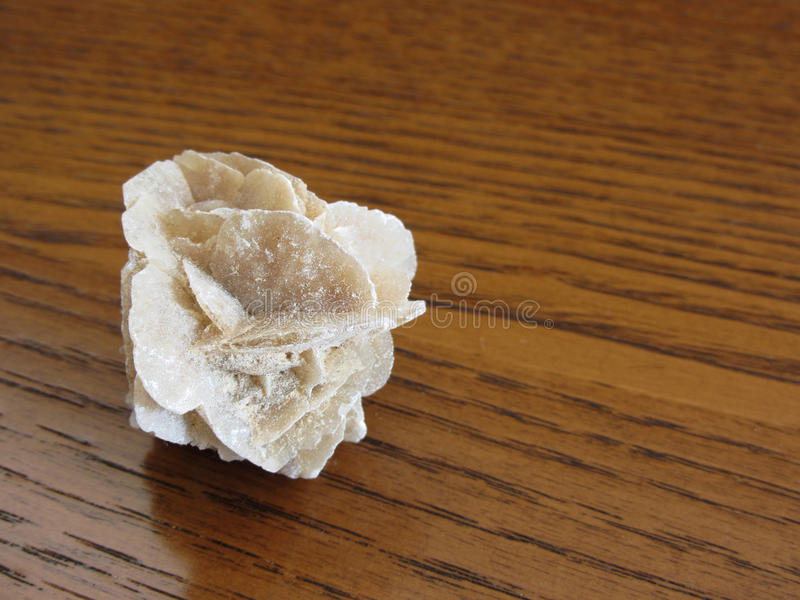 Mineral desert rose on wooden table . Also known as sand rose or rose rock or selenite rose or gypsum rose or baryte rose stock photo