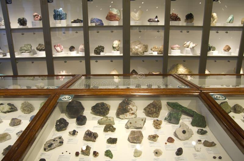 Mineral en el museo de Harvard de la historia natural imagen de archivo libre de regalías