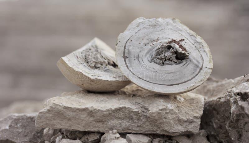 Mineral natural fotografía de archivo