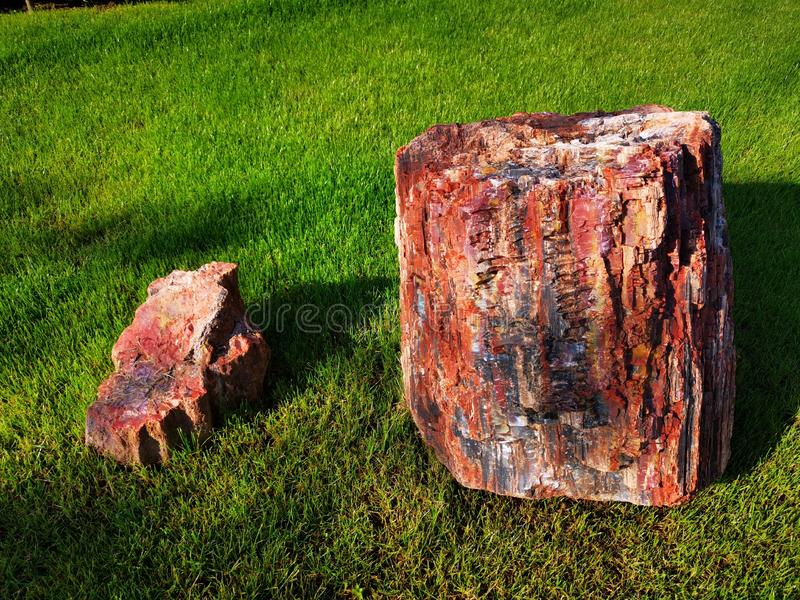 Mineral rock on the grass. Small and big sunlight highlights the texture stock images