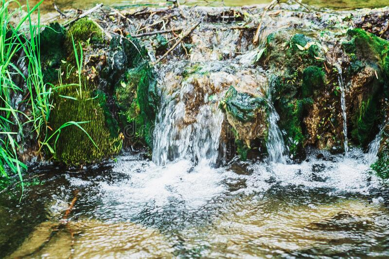 Mineral water of the river in the grass in the mountains. Stream of clear water of a mountain river close-up royalty free stock image