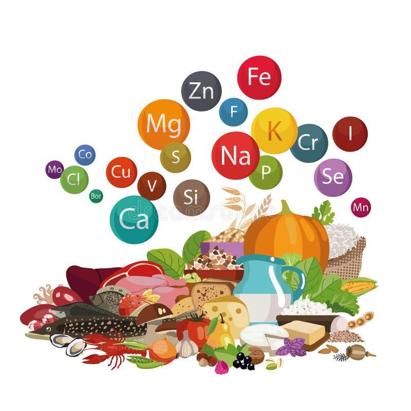 Mineralen in voedsel Een reeks verse natuurlijke biologische producten vector illustratie