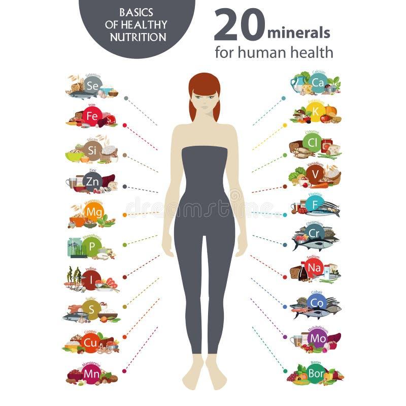 20 mineralen voor menselijke gezondheden royalty-vrije illustratie