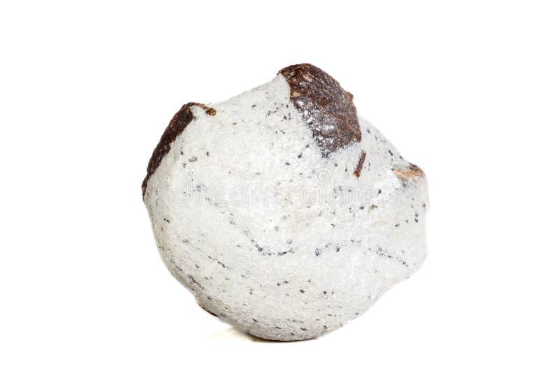 Mineralisk stenStaurolite för makro på en vit bakgrund arkivbilder