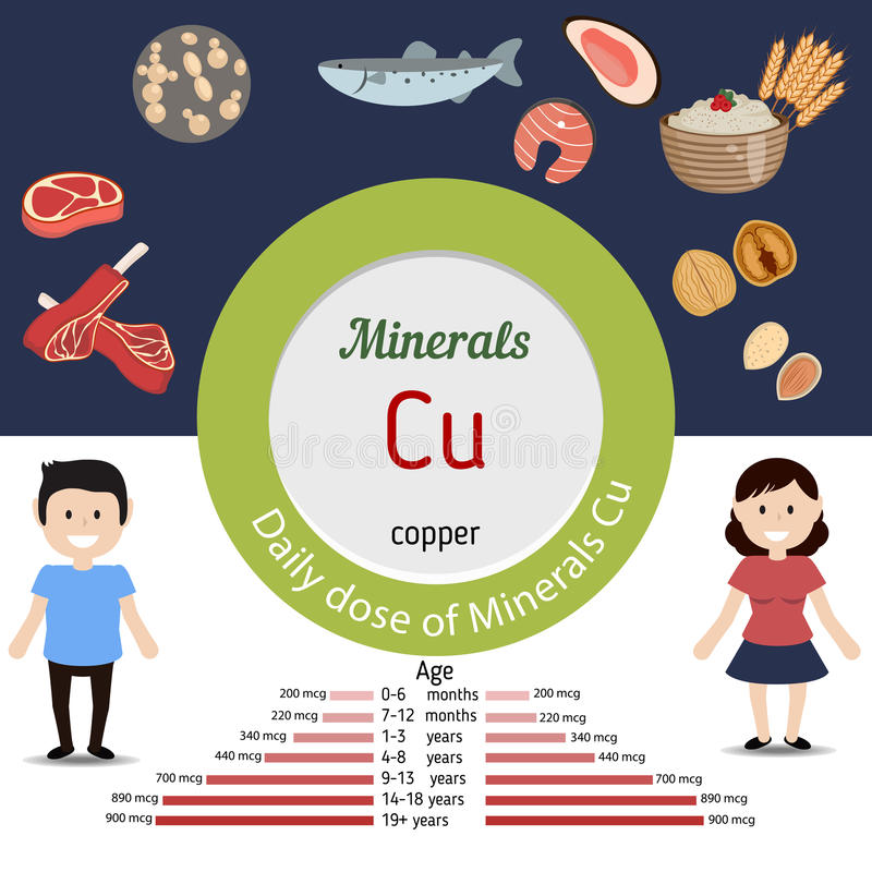 Minerals Cu infographic. Minerals Cu and vector set of minerals Cu rich foods. Healthy lifestyle and diet concept. Daily dose of minerals of copper vector illustration