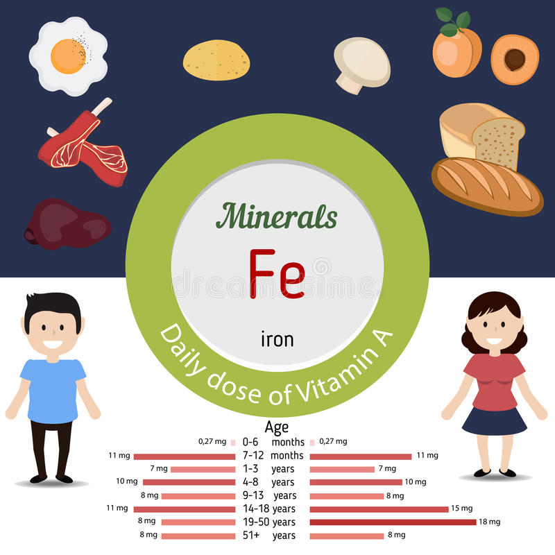 Minerals Fe infographic. Minerals Fe and vector set of minerals Fe rich foods. Healthy lifestyle and diet concept. Iron. Daily doze of minerals Fe stock illustration