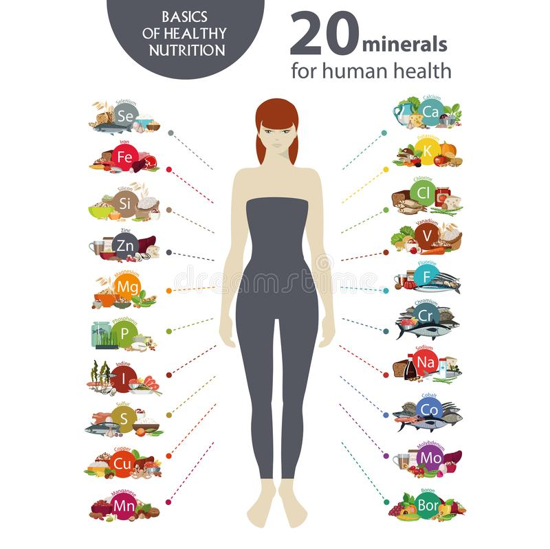 20 minerals for human health. A figure of the woman and products the containing minerals useful to the healt royalty free illustration