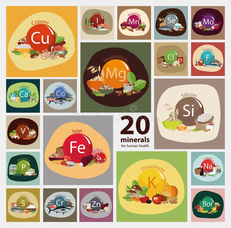 20 minerals. A set of organic organic foods with a high mineral content. `20 minerals for human health` series. Nutrition rich with the minerals necessary for royalty free illustration