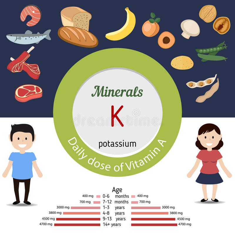 Minerals K infographic. Minerals K and vector set of minerals K rich foods. Healthy lifestyle and diet concept. Potassium. Daily doze of minerals K vector illustration