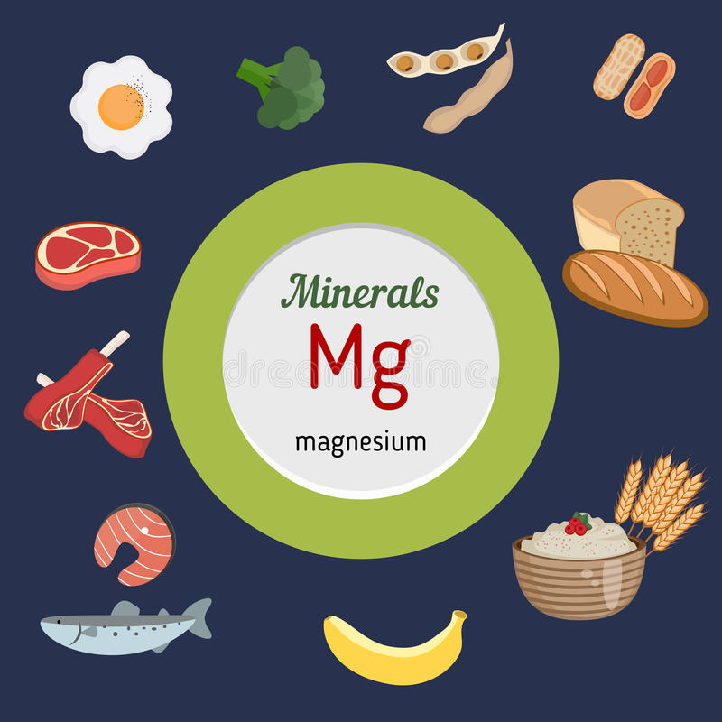 Minerals Mg infographic. Minerals Mg and vector set of minerals Mg rich foods. Healthy lifestyle and diet concept. Magnesium stock illustration