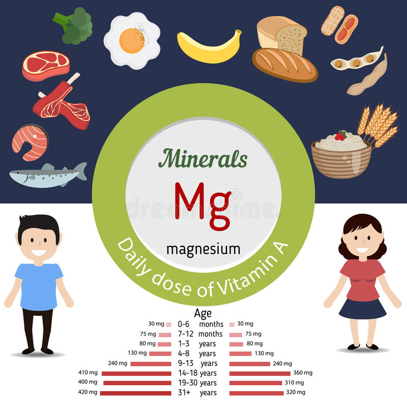 Minerals Mg infographic. Minerals Mg and vector set of minerals Mg rich foods. Healthy lifestyle and diet concept. Magnesium. Daily doze of minerals Mg royalty free illustration