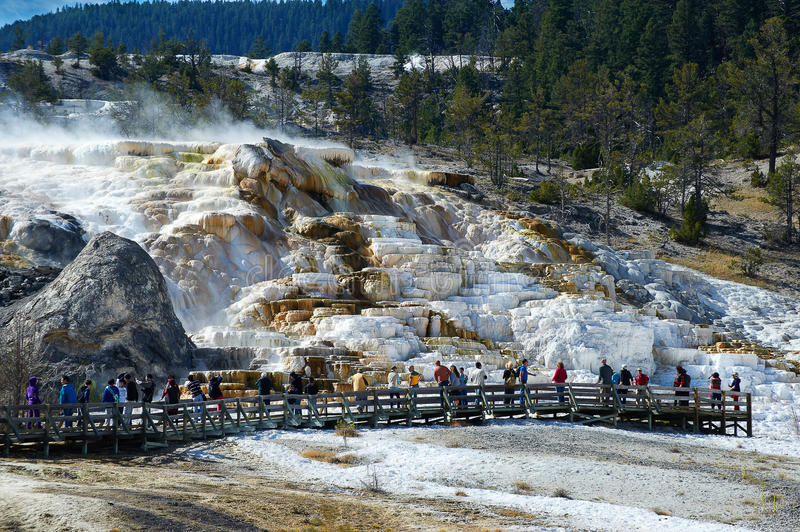 Minerva Terrace, Mammoth Hot Springs stock images